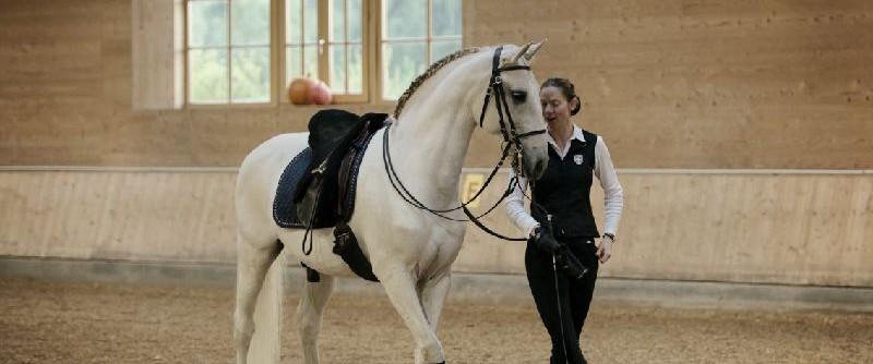 """Anja Beran sagt: """"Macht euch euer Pferd zum Partner!"""""""