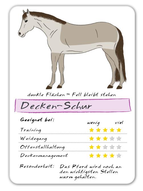 Tipps Verschiedenen Decken Arten | Pferde Scheren Der Reitsport Blog