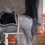 Happy Halloween bei Loesdau