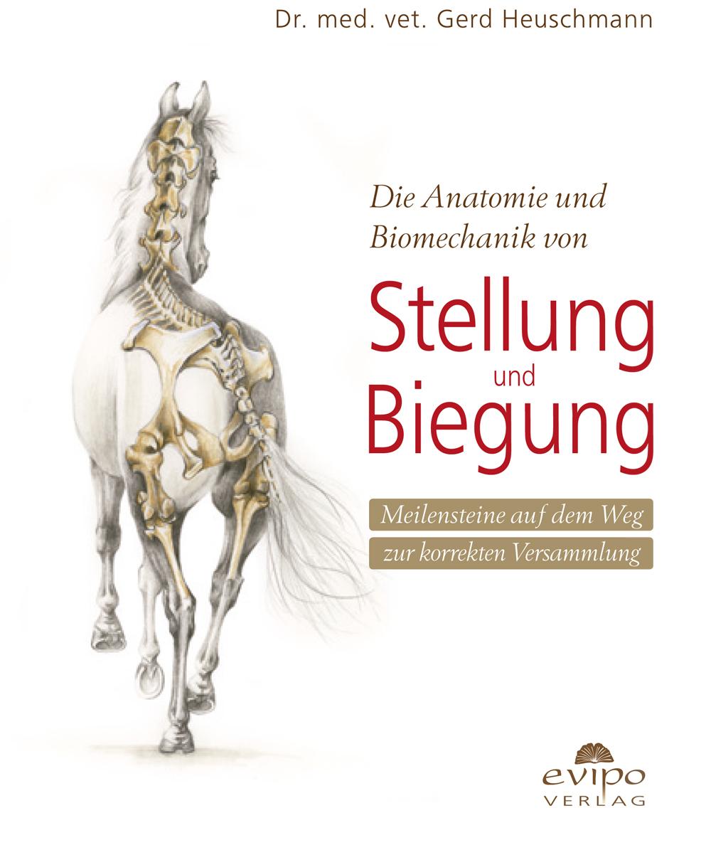 Stellung und Biegung von Dr. med. vet. Gerd Heuschmann