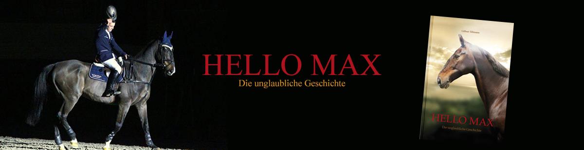 Gilbert Tillmann: Hello Max – die unglaubliche Geschichte