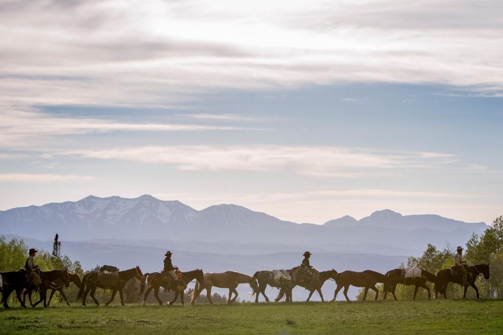 Mustangs vor See und Bergen in Karawane