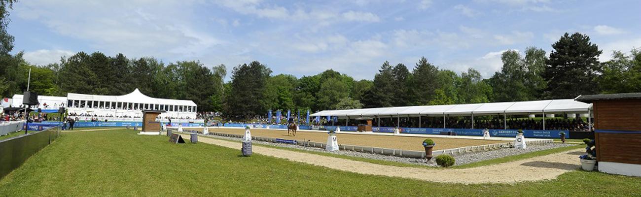 Loesdau auf der Pferd International München