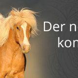 Loesdau Herbst/Winter-Katalog 2016/17 erscheint am 30. August