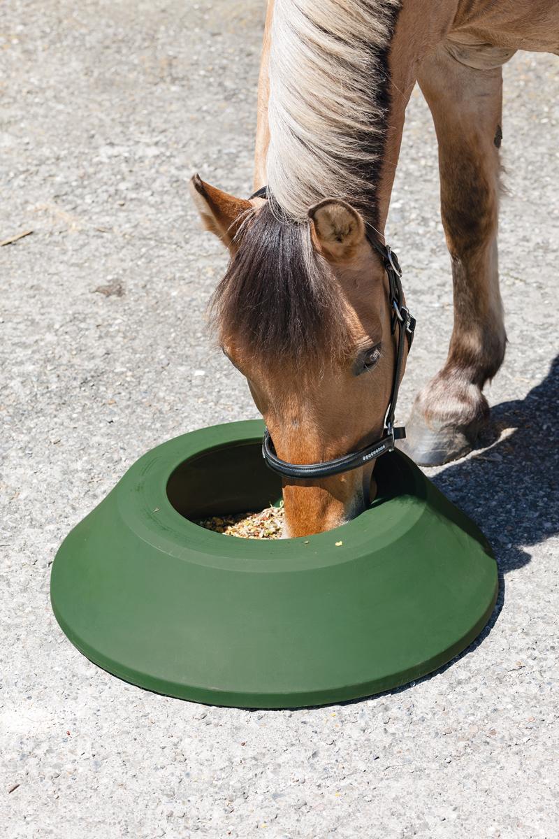 Mikroorganismen sind in der Pferdefütterung auf dem Vormarsch.