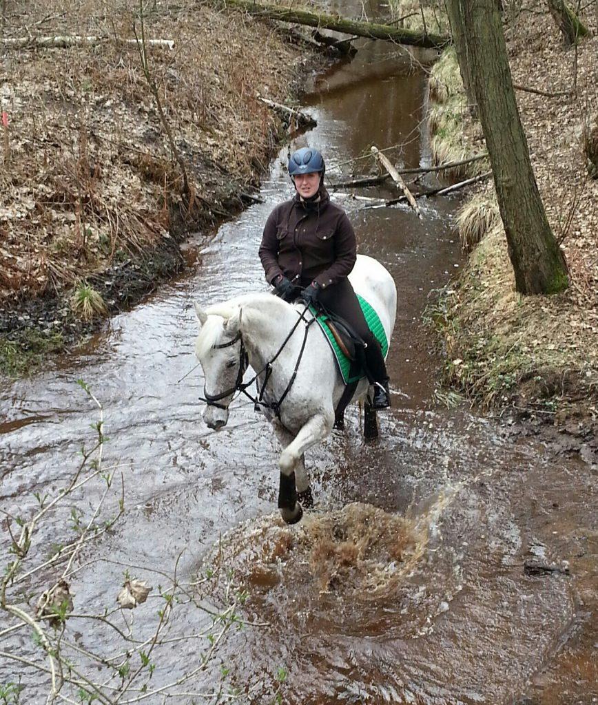 Sarah aus unserem Pferdesporthaus-Team in Lehrte zeigt euch wie ihr eure Pferde optimal auf eine Schur vorbereitet.