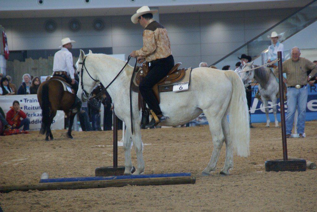 Uwe Epple mit Pferd Indra auf der Messe PFERD in Stuttgart.