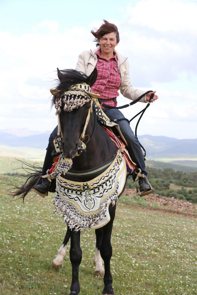 Pferd geschmückt
