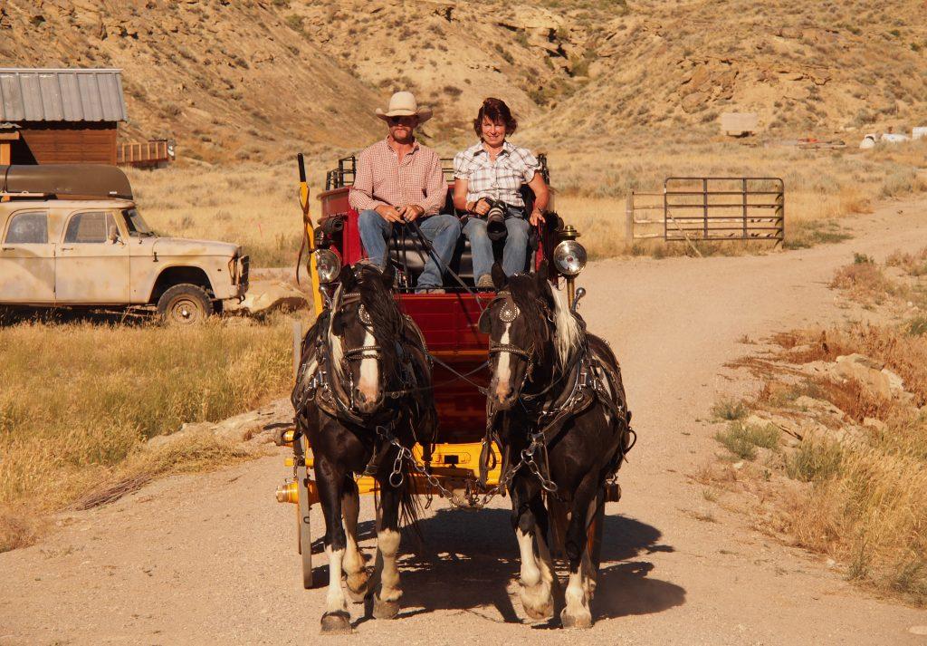 Gabriele Kärche auf Pferdegespann in den USA