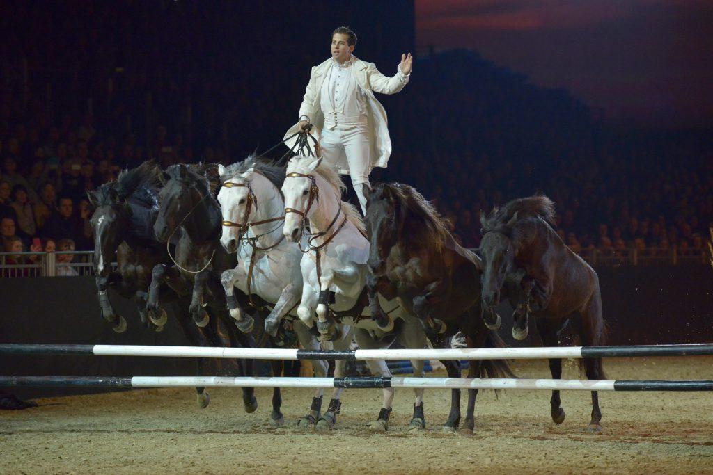 Sprung stehend mit sechs Pferden auf der Hoptop-Show