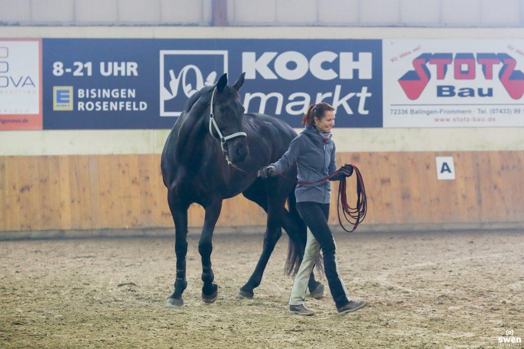 Sandra Schneider beim Verladen eines Pferdes