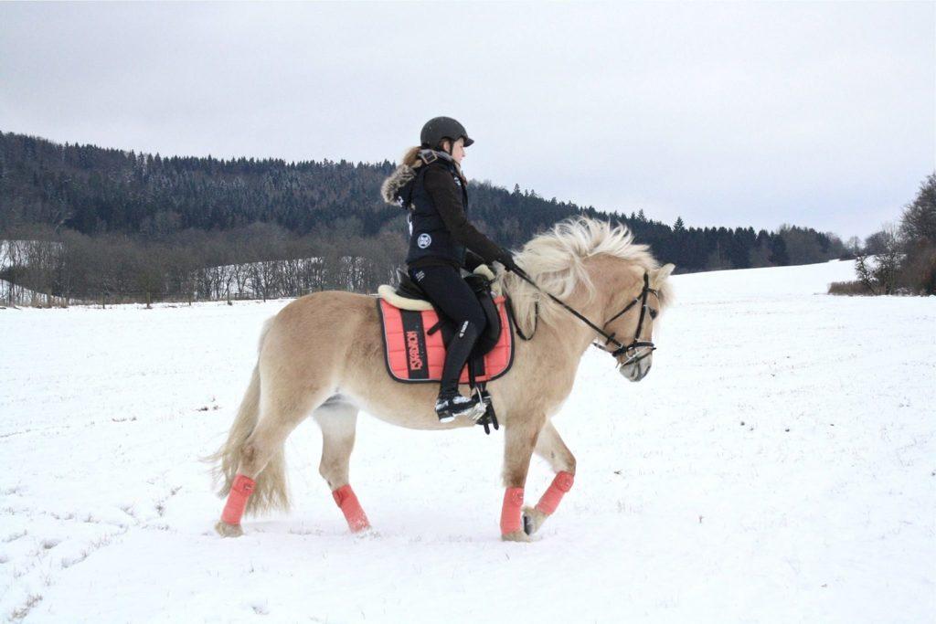 Reiterin auf Fjordstute im Schnee