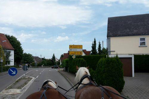 Pferde im Straßenverkehr vor der Kutsche