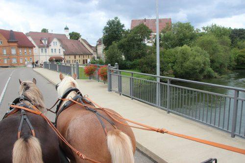 Pferde vor der Kutsche im Straßenverkehr