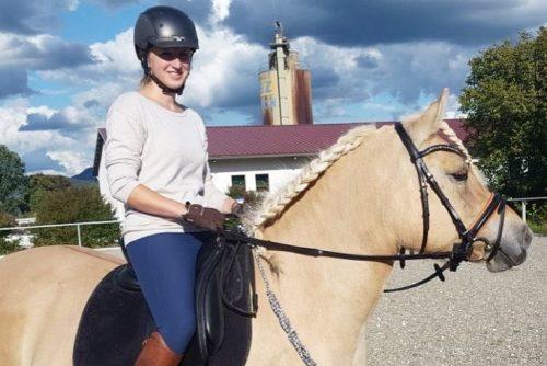 Fjordpferd und Reiterin