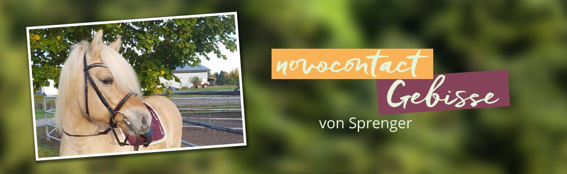 novocontact Gebisse von Sprenger