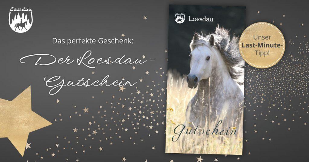 Loesdau-Gutschein