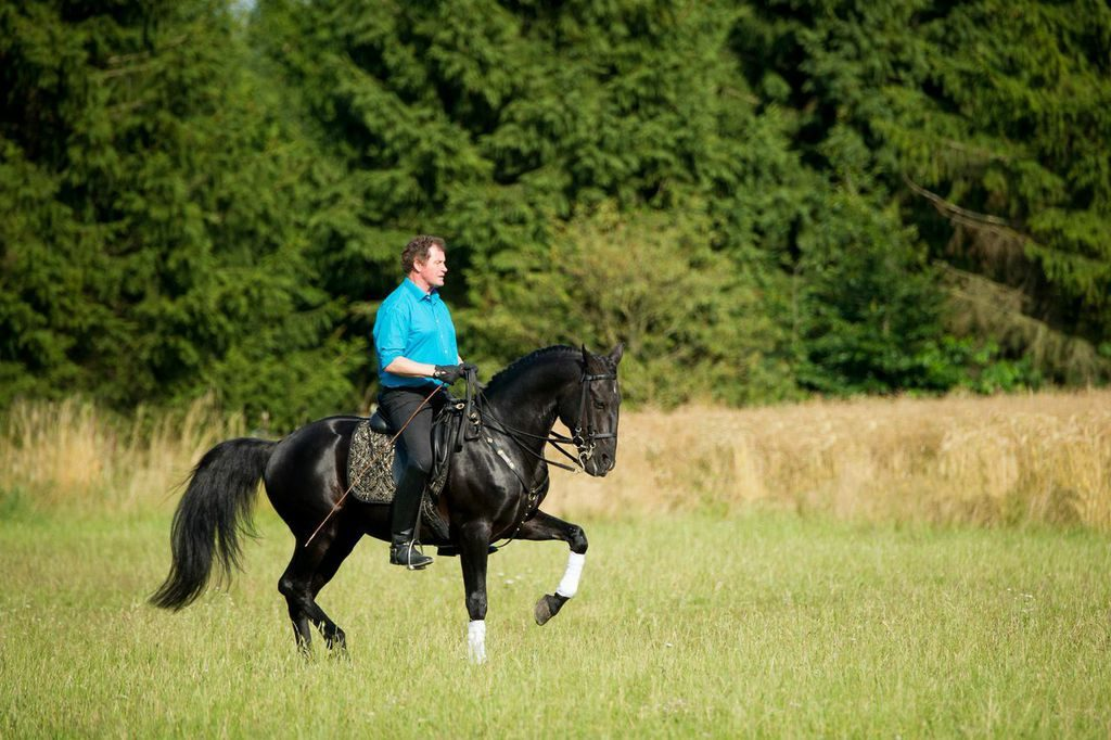 Ausbilder peter Hinrichs auf seinem Pferd