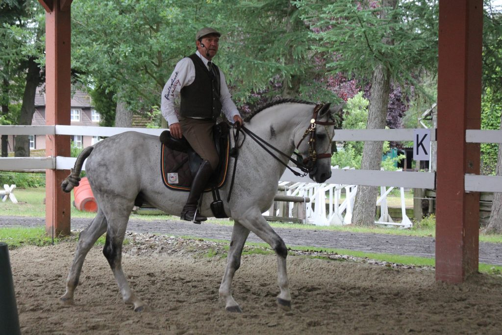 Stefan Schneider auf dem Pferd