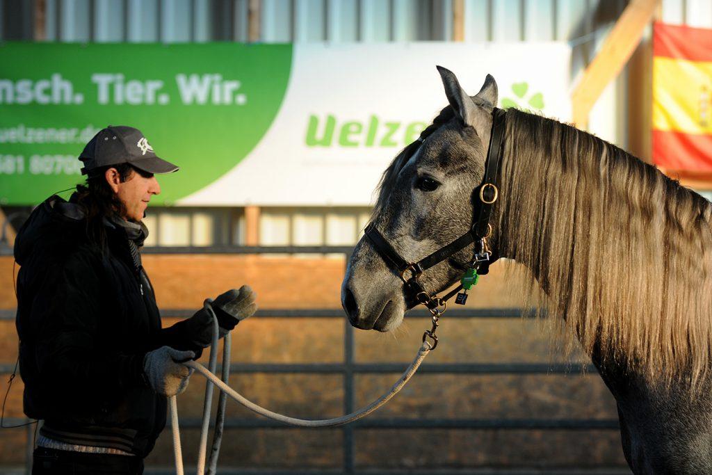 Frédéric Pignon kommuniziert mit Pferd