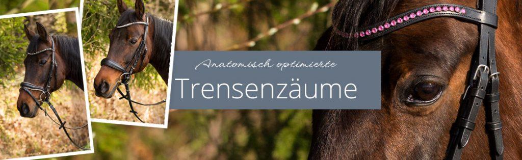 Anatomisch optimierte Trensenzäume - Titelbild