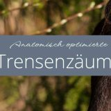 Anatomisch optimierte Trensenzäume aus bester Lederqualiät von Loesdau