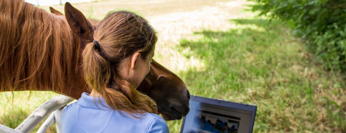 Pferd bleibt zu Hause? Merkliste für eure Urlaubsvertretung