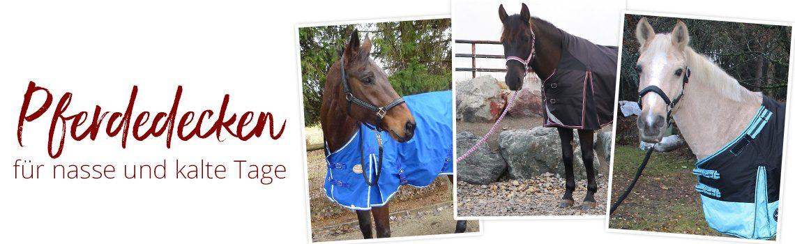 Pferdedecken für nasse und kalte Tage