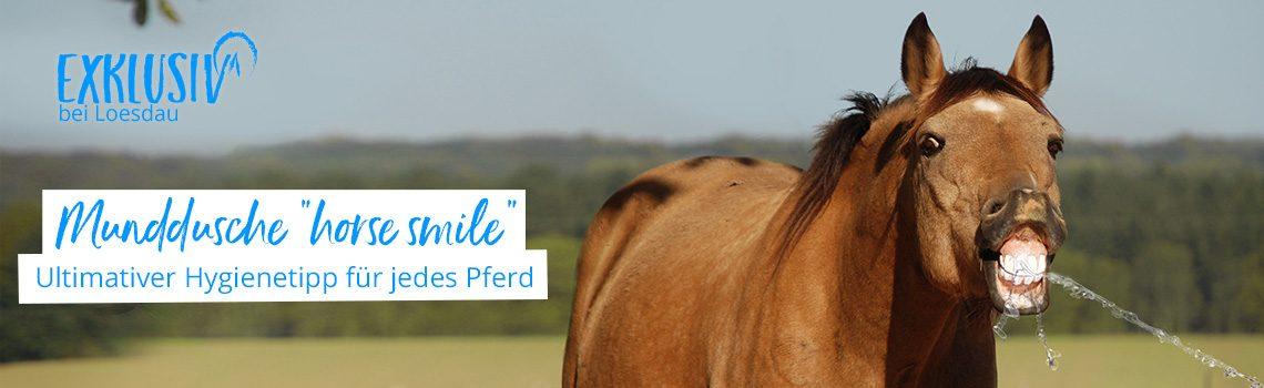 Gesunde Pferdezähne mit horse smile