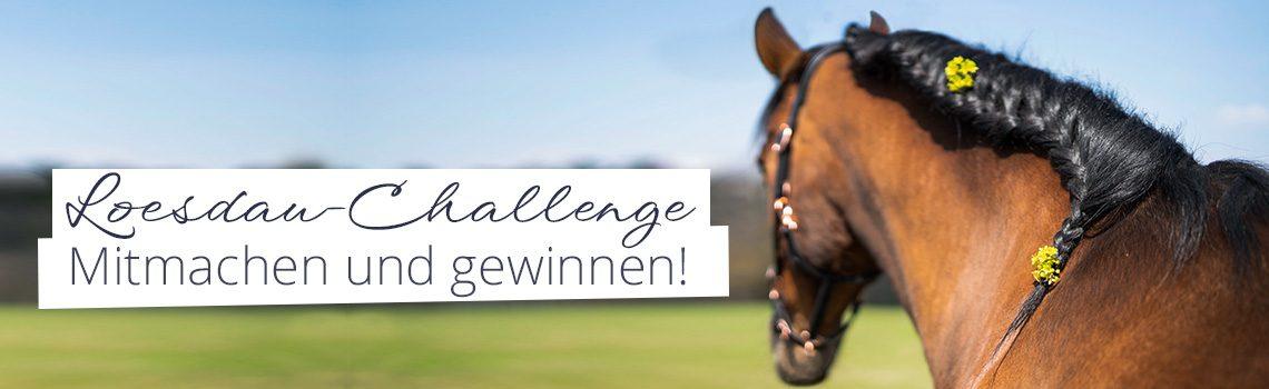Loesdau Challenge Nr. 4