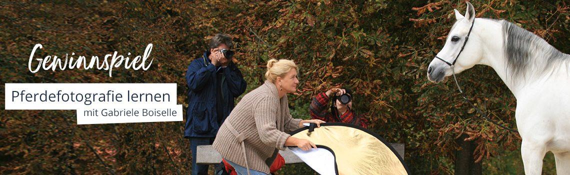 Gewinnspiel: Pferdefotografie lernen mit Gabriele Boiselle