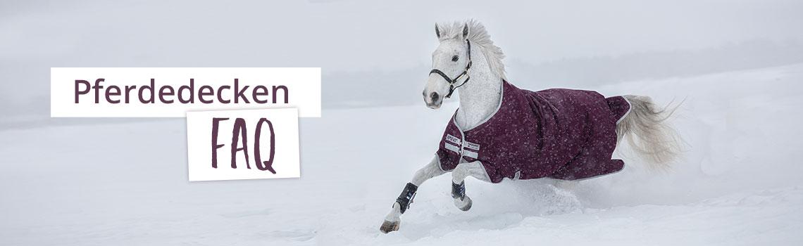FAQ zum Thema Pferdedecke