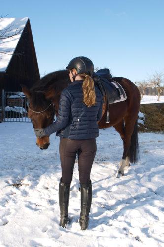 Pferd und Reithose von hinten
