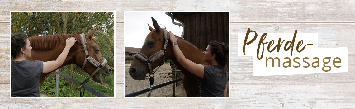 Pferdemassage: Wie sie hilft und was sie löst